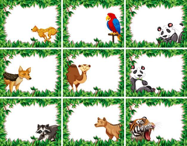 Set van dier op natuur grens