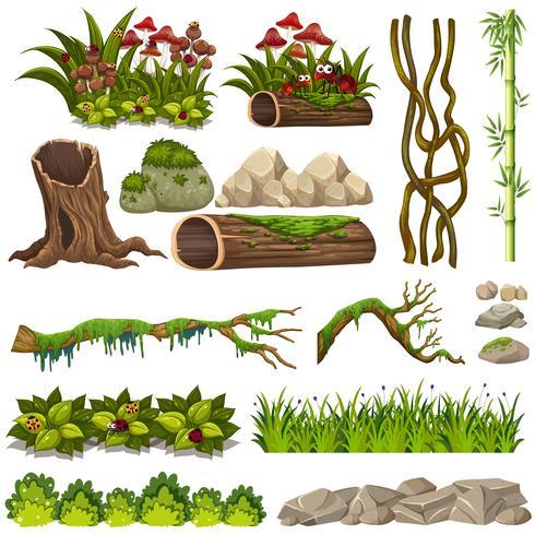 A set of nature elements vector
