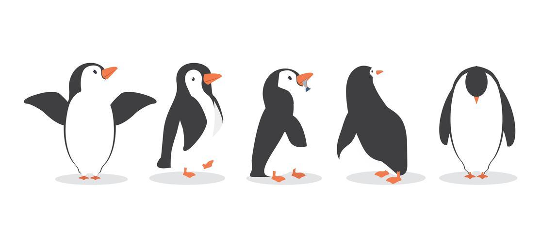 personagens de pinguim em poses diferentes definir