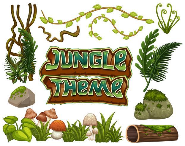 Conjunto de elementos de selva. vector