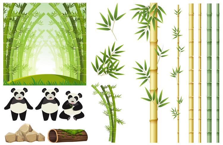 Conjunto de panda e bambu
