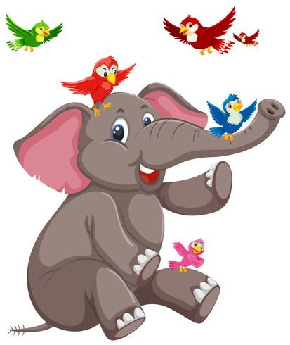 Éléphant heureux avec oiseau