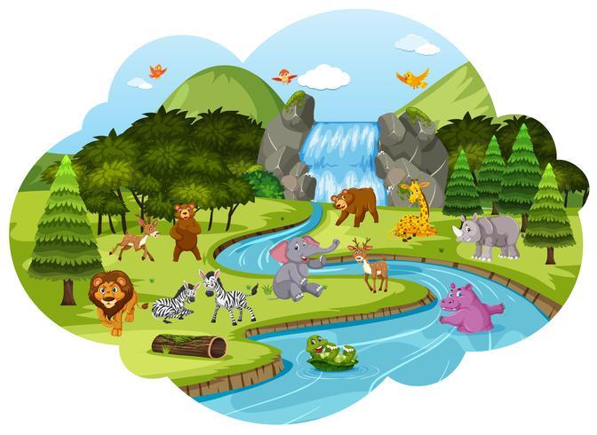 Djur i skogscenen