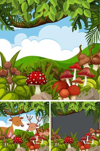 Tres escenas de bosque con venados y setas. vector