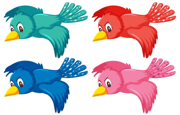 A Set Of Flying Bird Download Free Vectors Clipart Graphics