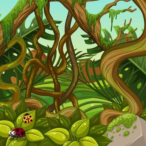 Uma paisagem de selva verde