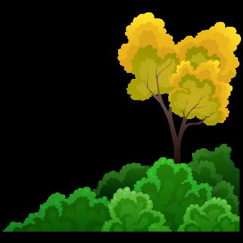 arbustos y arboles