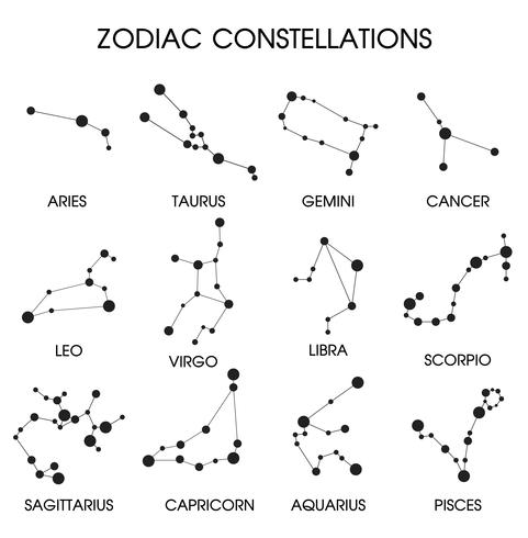 The 12 Zodiacal Constellations. vector