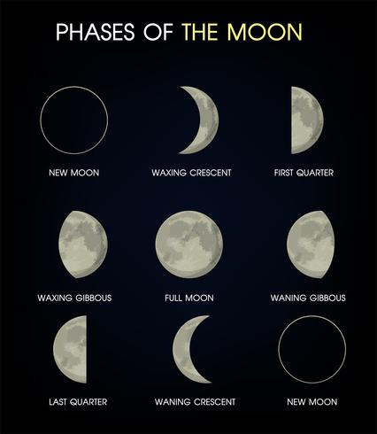 The Phases of the Moon.Stampa