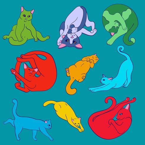 Funny bright cute cats practicing yoga