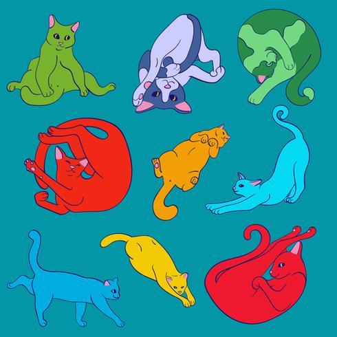 Roliga ljust söta katter som övar yoga