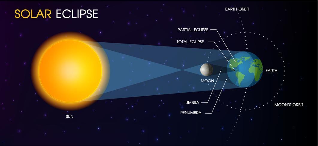 Solens solförmörkelse. vektor
