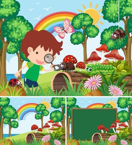Scener med pojke tittar på många insekter i trädgården