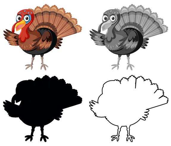 Set of turkey character