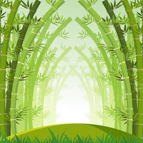 Achtergrondscène met groen bamboebos