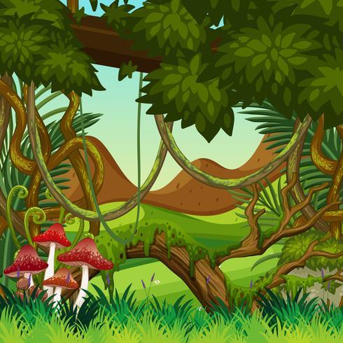 Scena di sfondo naturale giungla