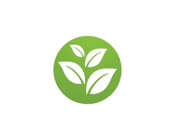 Illustrazione di logo di ecologia - vettori