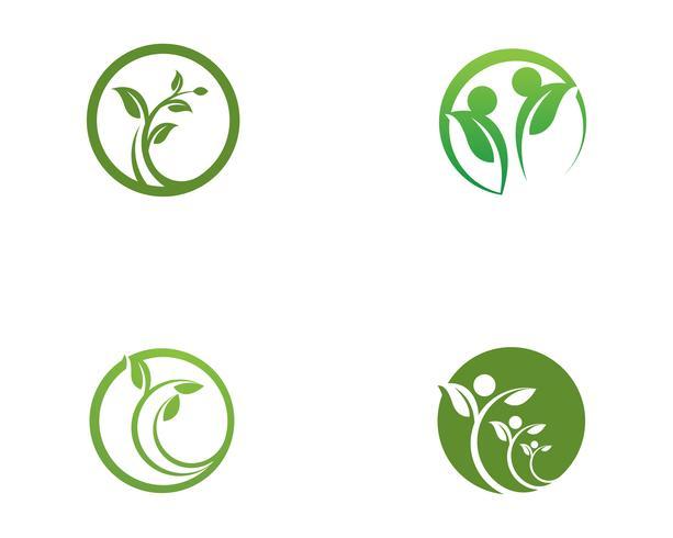 Modelo de logotipo de folha de árvore de eco