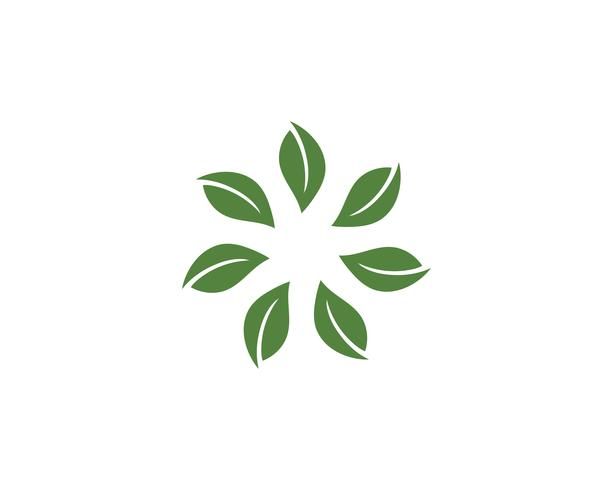Sept feuilles vont vector vert logo nature