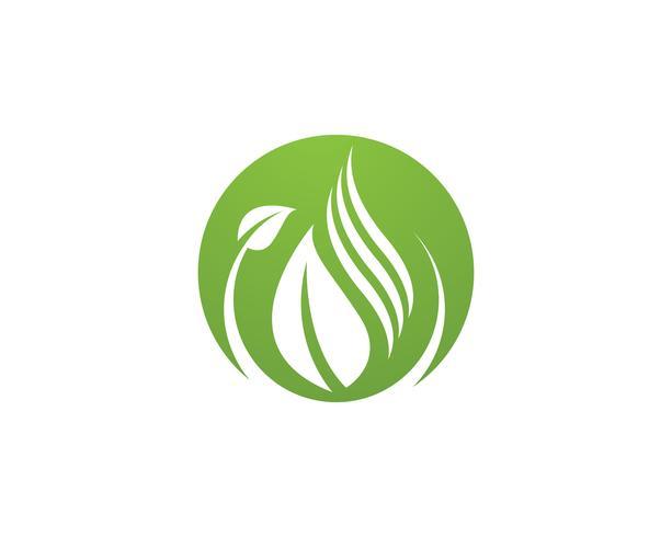 Eco Boom Blad Logo Sjabloon