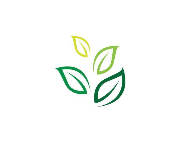 Diseño del ejemplo del icono del vector de la hoja del árbol