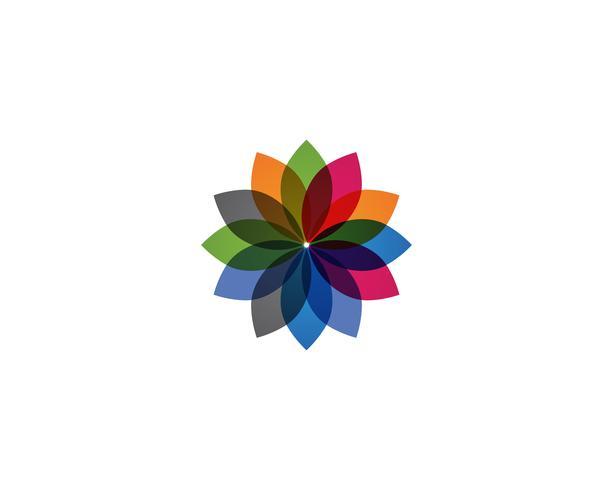 bloemenpatronenembleem en symbolen op een wit