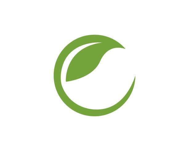 Lettre C Logos de l'élément nature écologie feuille verte