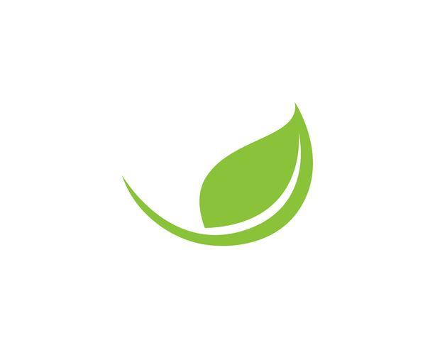 icône de vecteur feuille verte écologie nature élément