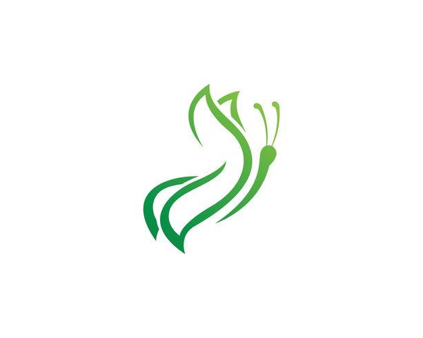 Mariposa logo plantilla vector icono ilustración