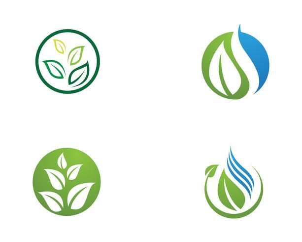 Ícone de folha de árvore Vector Design ilustração