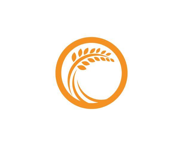 Agriculture Logo Logo Template, icône de vecteur de logo vie saine