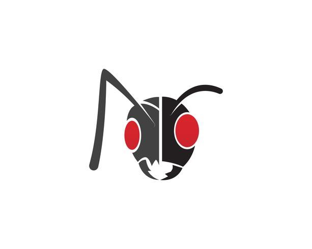 Ant Logo mall vektor illustration