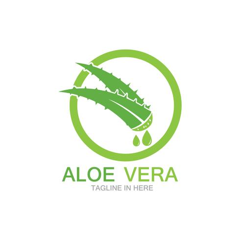 Aloe Vera Logo Vektor Illustration Vorlage