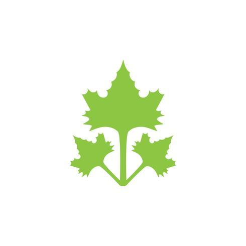 feuille verte écologie nature élément vecteur