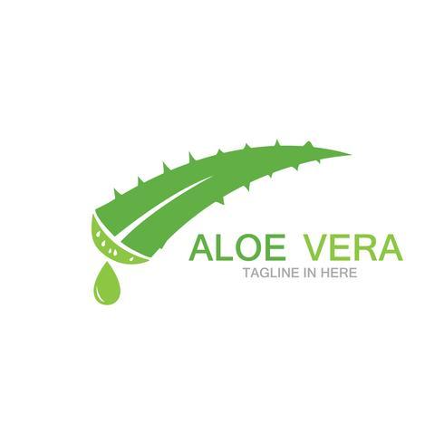 Aloe vera logo vektor ilustrationsmall