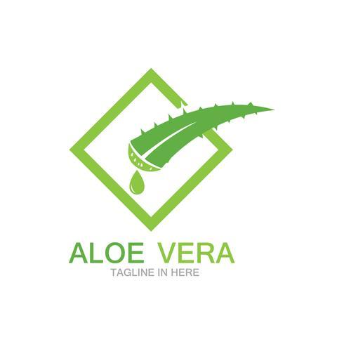 Modelo de ilustração vetorial logotipo aloe vera