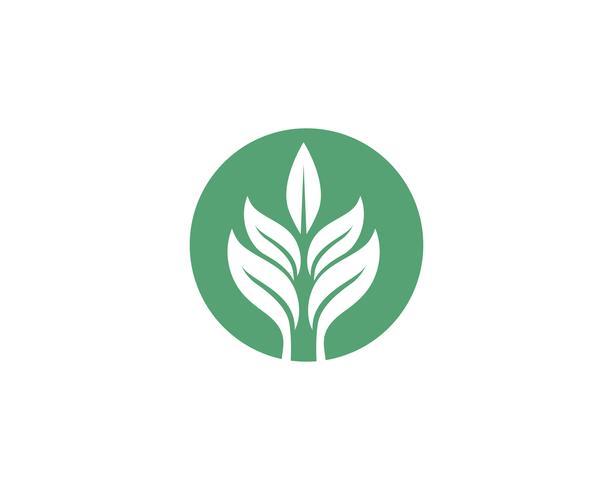 L'ecologia lascia l'illustrazione di logo