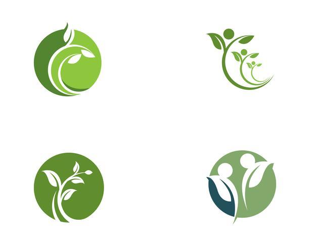 Arbre feuille Vector icon Illustration design