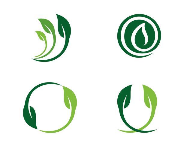Ecology leaves logo illustration