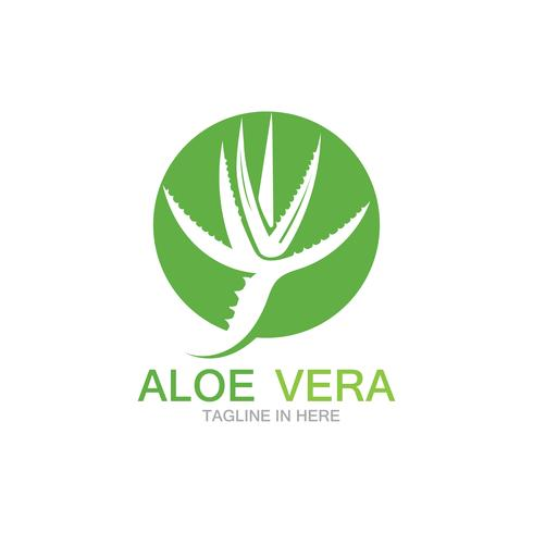 Modèle d'illustration vectorielle logo Aloe vera