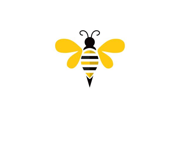 bee logo and symbol vector templates