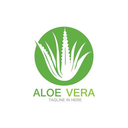 Aloë vera logo vector ilustration sjabloon