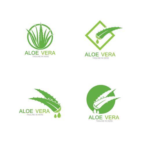 Plantilla de ilustración de vector logo Aloe vera