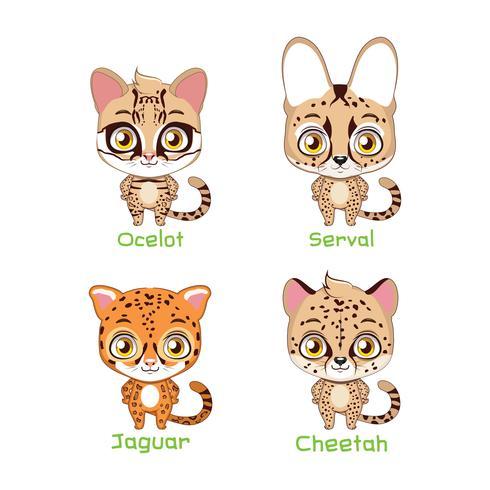 Serie di illustrazioni di specie feline maculate vettore