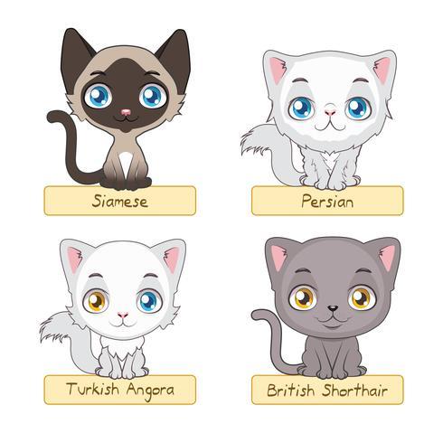 Cute cats variation