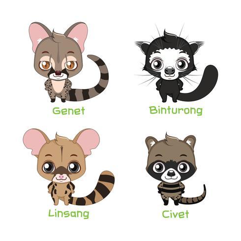 Animais pertencentes à família Viverridae