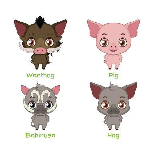 Conjunto de especies porcinas vector