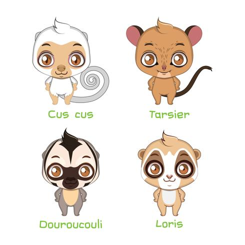 Set of smaller sized primates