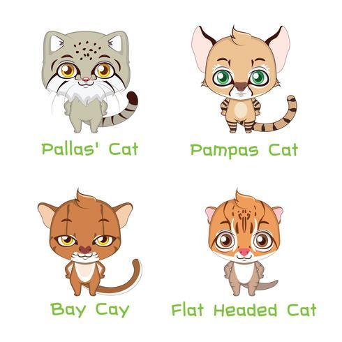 Colección de varias especies de gatos salvajes vector