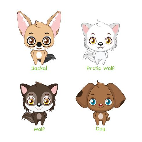 Set of canine family species vector